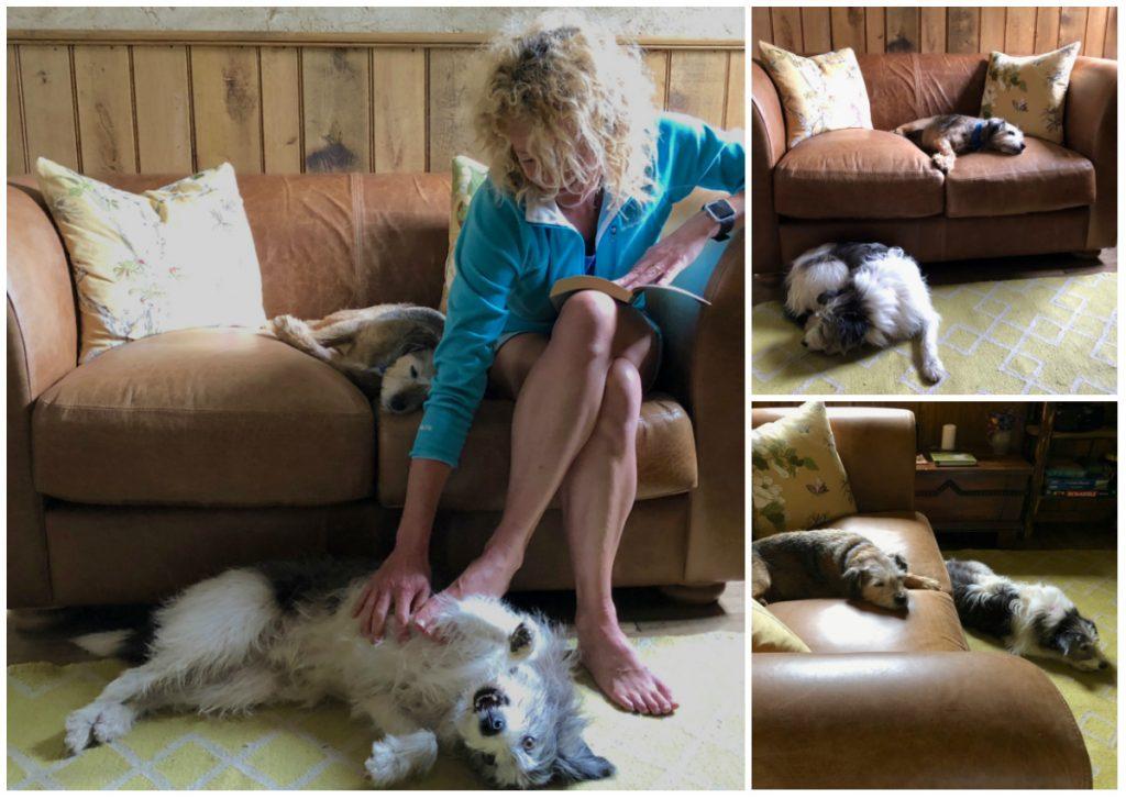Indigo Grandad Sofa at Kate Humble's Poacher's Cabin